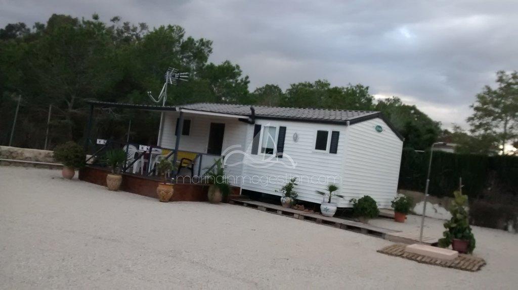 Alquilar bungalow en elche alicante playas for Piscinas municipales elche