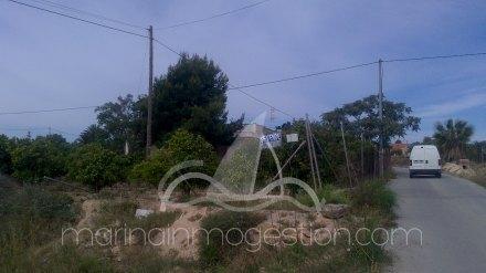 Finca, Situado en Elche Alicante 2