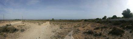 Terreno, Situado en Elche Alicante 11