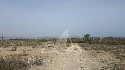 Terreno, Situado en Elche Alicante 9