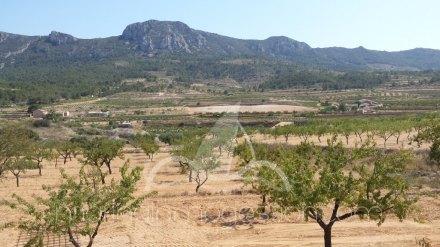 Chalet independiente, Situado en Hondón de los Frailes Alicante 9