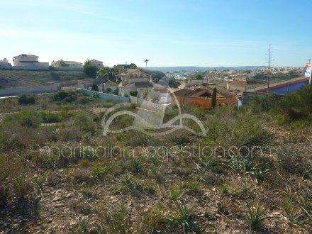 Terreno, Situado en San Fulgencio Alicante 7