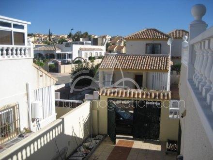 Chalet, Situado en San Fulgencio Alicante 13