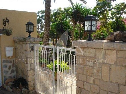 Finca, Situado en Elche Alicante 23