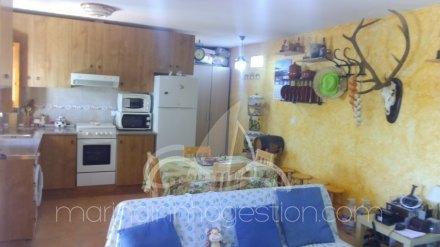Finca, Situado en Elche Alicante 11