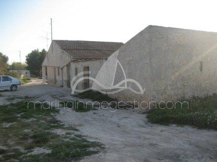 Finca, Situado en Elche Alicante 7