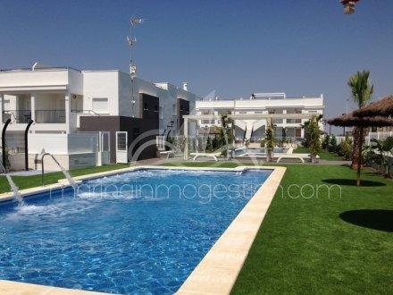 Bungalow, Situado en Torrevieja Alicante 1