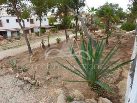 Chalet independiente, Situado en Santa Pola Alicante 44
