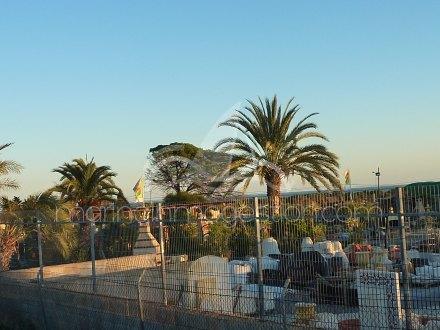 Terreno, Situado en Elche Alicante 6