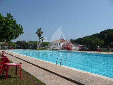 Bungalow, Situado en Guardamar del Segura Alicante 2