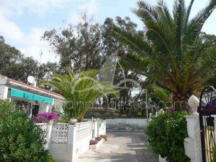 Bungalow, Situado en Guardamar del Segura Alicante 1