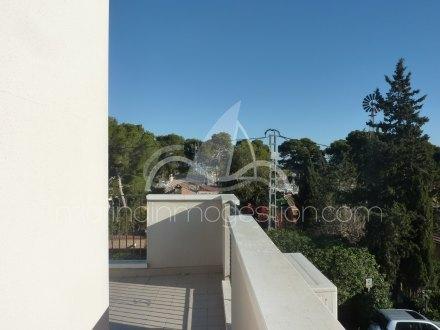 Chalet, Situado en Elche Alicante 5