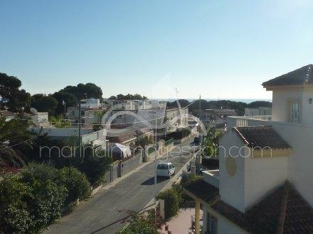 Chalet, Situado en Elche Alicante 6