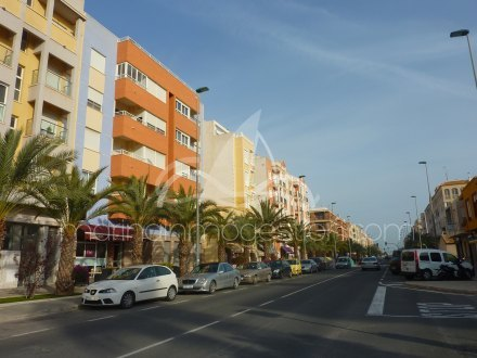 Local comercial, Situado en Elche Alicante 4