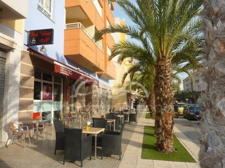 Local comercial, Situado en Elche Alicante 5