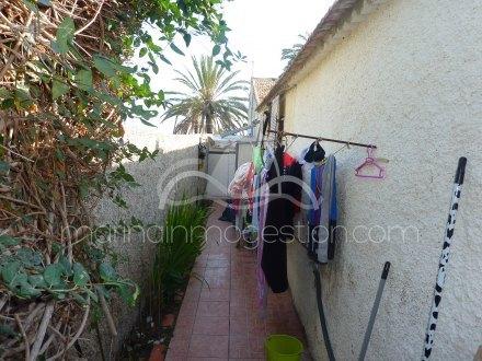 Chalet, Situado en Elche Alicante 16