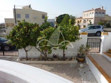 Chalet, Situado en San Fulgencio Alicante 4
