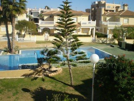 Chalet, Situado en Torrevieja Alicante 2