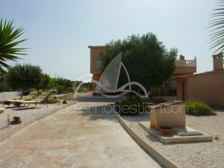 Chalet independiente, Situado en Elche Alicante 20