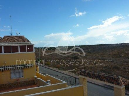 Chalet, Situado en San Fulgencio Alicante 24
