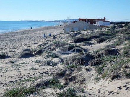 Terreno, Situado en Elche Alicante 13