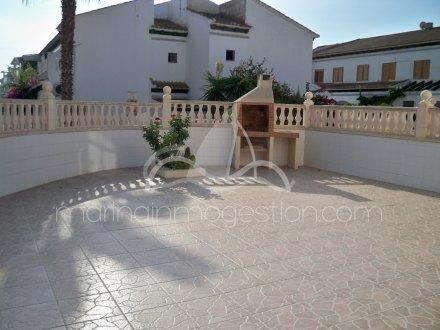 Bungalow, Situado en Torrevieja Alicante 12