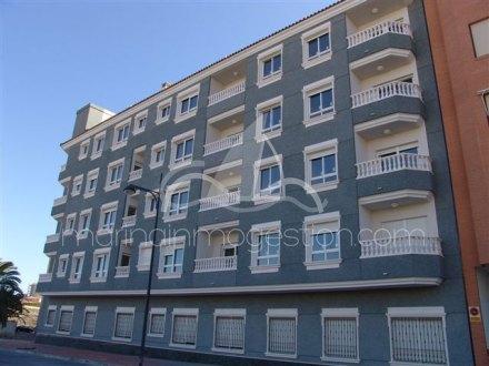 Apartamento, Situado en Campello (el) Alicante 1