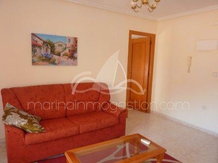 Apartamento, Situado en Elche Alicante 4