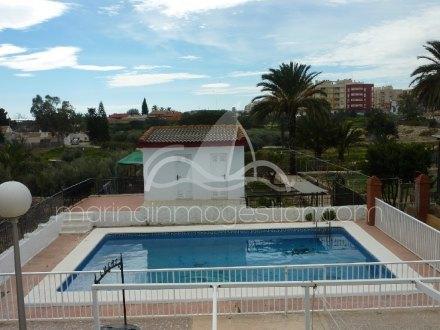 Chalet independiente, Situado en Elche Alicante 22