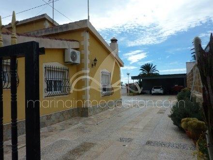 Chalet independiente, Situado en Elche Alicante 24