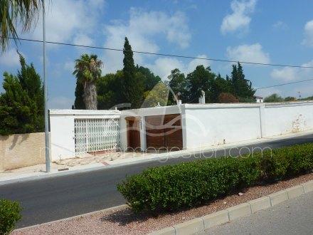 Finca, Situado en San Fulgencio Alicante 17