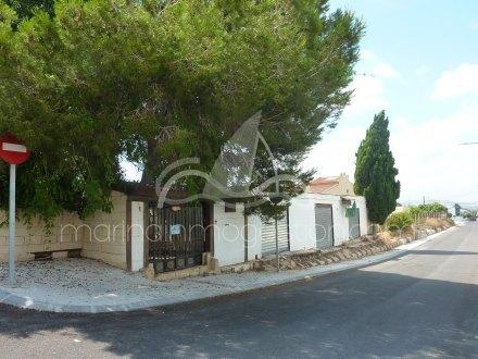 Finca, Situado en San Fulgencio Alicante 1