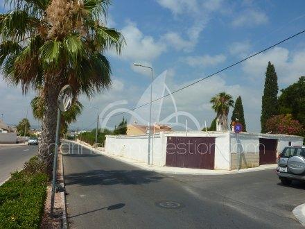 Finca, Situado en San Fulgencio Alicante 2