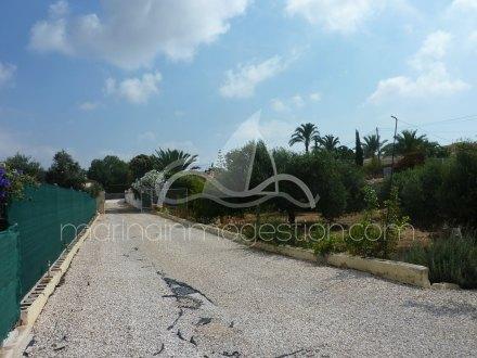 Terreno, Situado en San Fulgencio Alicante 6
