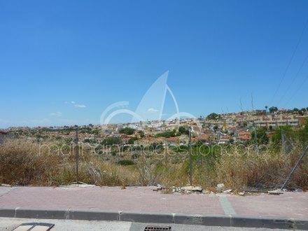Terreno, Situado en San Fulgencio Alicante 2