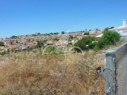 Terreno, Situado en San Fulgencio Alicante 3