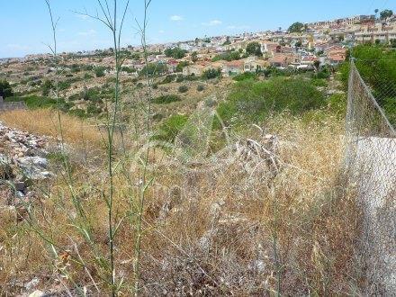 Terreno, Situado en San Fulgencio Alicante 5