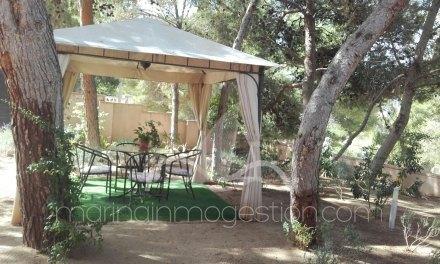 Finca, Situado en Tibi Alicante 13