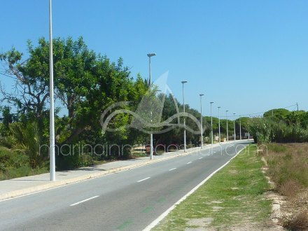 Terreno, Situado en Elche Alicante 3