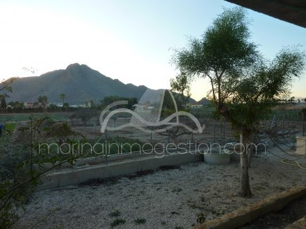 Chalet independiente, Situado en Callosa de Segura Alicante 23
