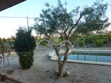 Chalet independiente, Situado en Callosa de Segura Alicante 21