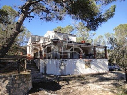 Chalet independiente, Situado en Hondón de los Frailes Alicante 1