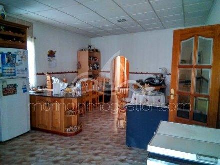 Chalet independiente, Situado en San Fulgencio Alicante 19