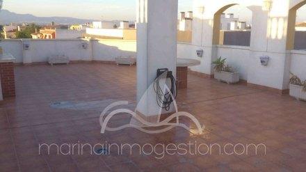 Apartamento, Situado en Dolores Alicante 3