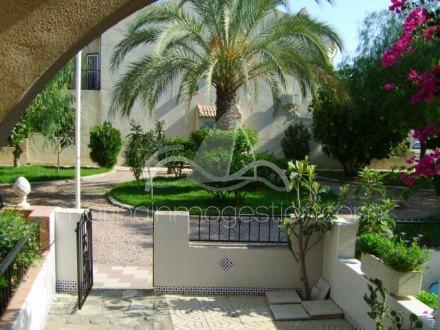Bungalow, Situado en Guardamar del Segura Alicante 8