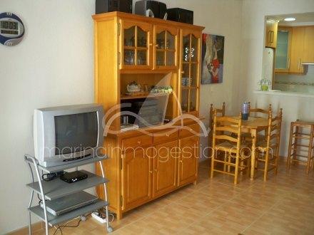 Bungalow, Situado en Torrevieja Alicante 14