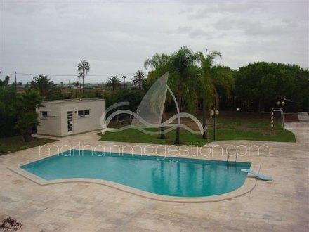 Chalet independiente, Situado en Elche Alicante 14