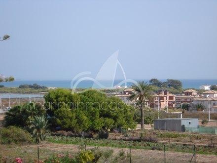 Finca, Situado en Elche Alicante 26