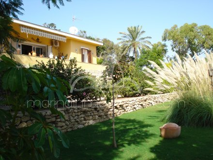 Finca, Situado en Elche Alicante 1
