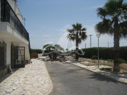 Chalet independiente, Situado en Elche Alicante 3